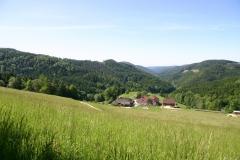 Blick ins Tal im Sommer