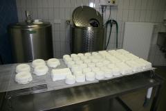 Frischer Käse